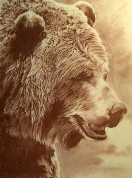 Pastel - Grizzly Bear by Tim  Joyner