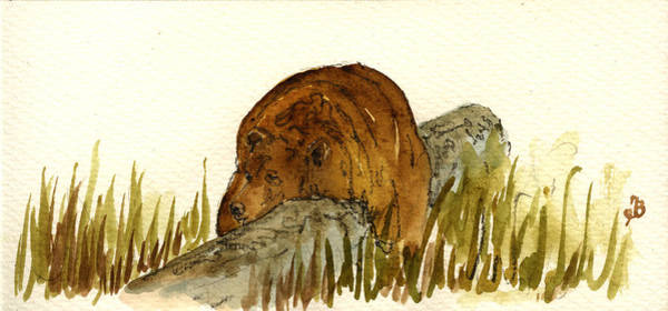 Big Painting - Grizzly Brown Bear by Juan  Bosco