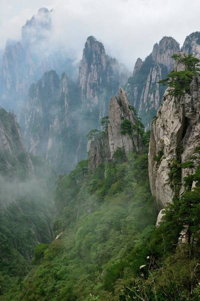 China Photograph - Grotesque Rocks On Foggy Mt. Huangshan by Lijuan Guo Photography