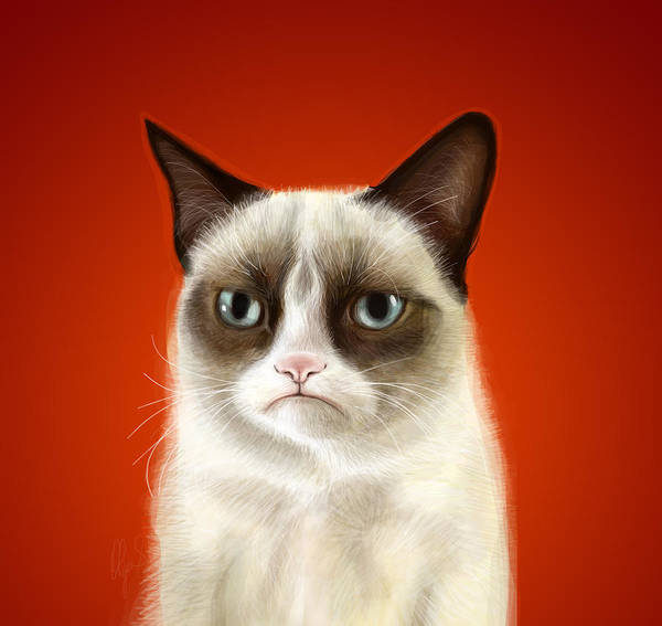 Digital Illustration Digital Art - Grumpy Cat by Olga Shvartsur