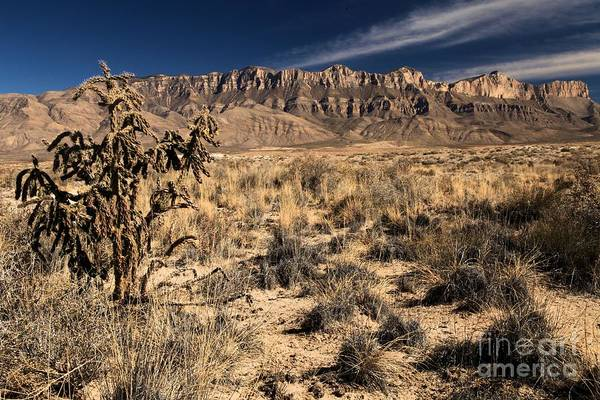 Photograph - Guadalupe Landscape by Adam Jewell