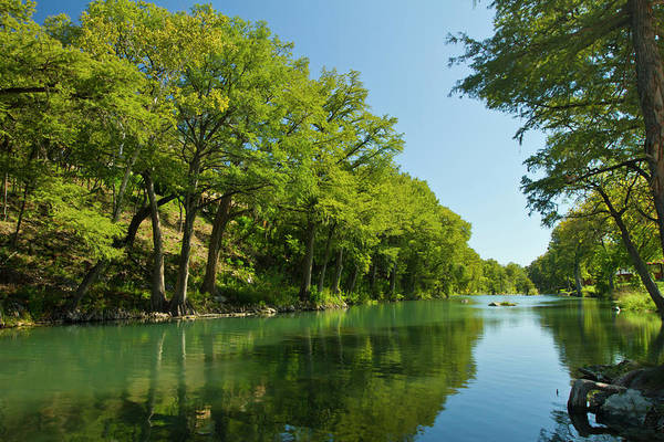 Bald Cypress Wall Art - Photograph - Guadalupe River And Bald Cypress Trees by Larry Ditto