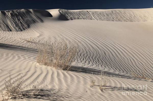 Photograph - Guadalupe Sand Dunes by Adam Jewell