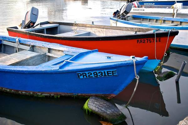 Photograph - Guanica Skiffs by Ricardo J Ruiz de Porras