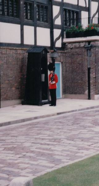 Rifles Photograph - Guard London England by Lisa Travis