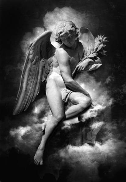 Photograph - Guardian Angel by Marc Huebner