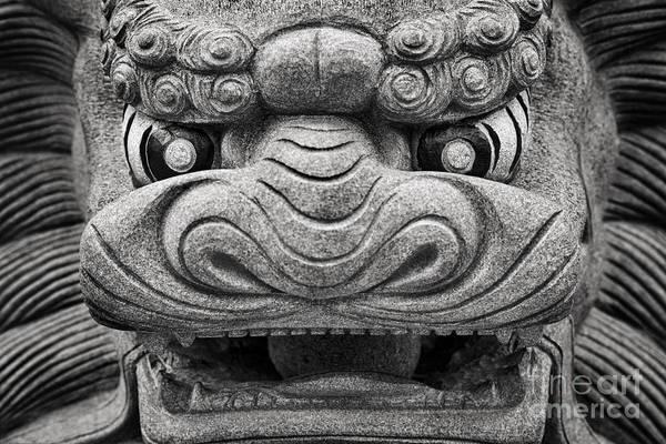 Lion Statue Photograph - Guardian by Rod McLean