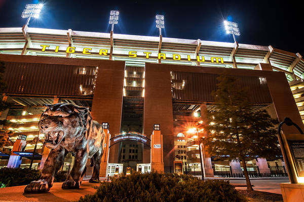 Photograph - Guarding Tiger Stadium by Andy Crawford