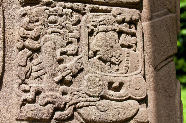 Carving Photograph - Guatemala, Quirigua by Michael Defreitas