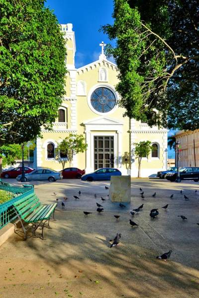 Photograph - Guayama Catholic Church And Plaza by Ricardo J Ruiz de Porras