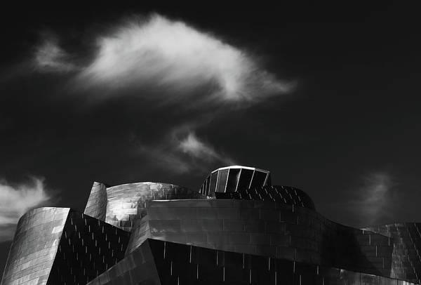 Spain Photograph - Guggi #1 by Hans-wolfgang Hawerkamp