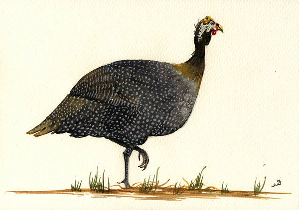Hen Painting - Guinea Fowl by Juan  Bosco