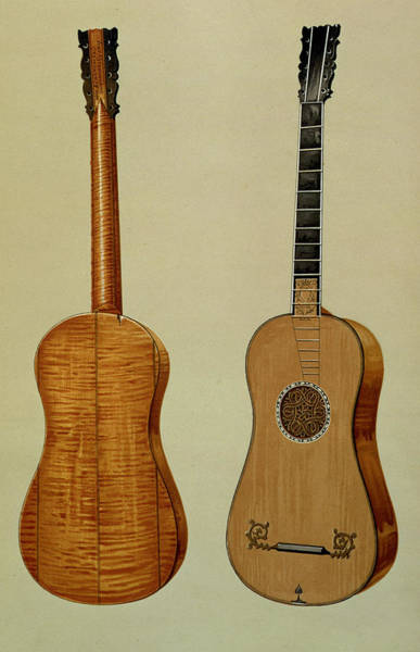 Back Drawing - Guitar Made By Antonio Stradivarius by Alfred James Hipkins