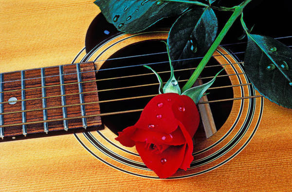 Wet Rose Wall Art - Photograph - Guitar With Single Red Rose by Garry Gay
