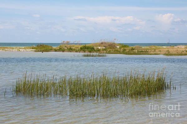Photograph - Gulf Coast Serenity by Carol Groenen