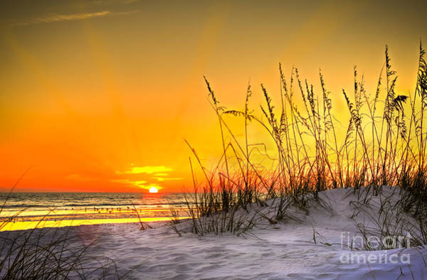 Wall Art - Photograph - Gulf Sunset by Marvin Spates