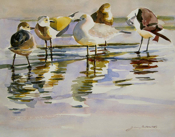 Painting - Gull Family by Julianne Felton