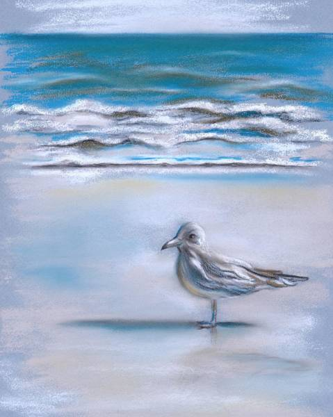 Pastel - Gull On The Shore by MM Anderson