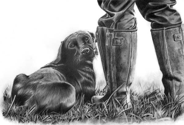 Gun Dog Art Print