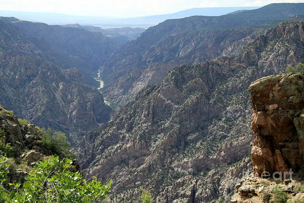 Wall Art - Photograph - Gunnison River Winding Through The Mountains by Christiane Schulze Art And Photography