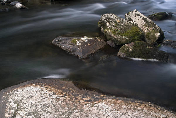 Photograph - Gurggling Creek by Andy Crawford
