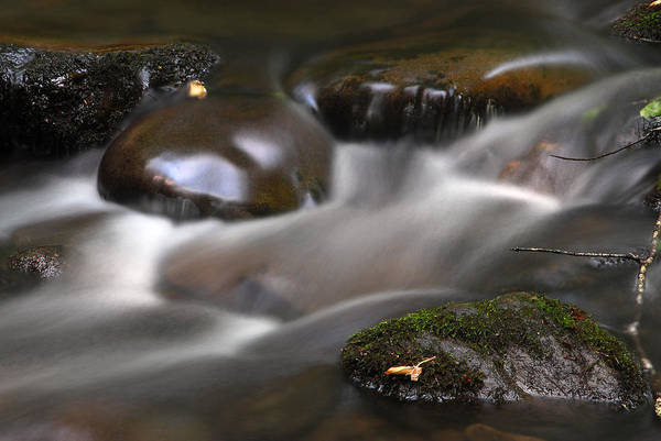 Photograph - Gurgling Brook by Andy Crawford