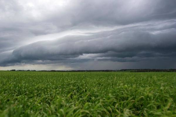 Shelf Cloud Photograph - Gust Front by Mike Theiss/science Photo Library