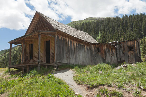 Photograph - Gustavson House In Animas Forks by Fred Stearns