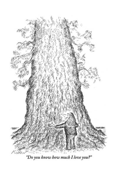 Tree Drawing - Guy Hugging A Giant Tree And Speaks To It by Edward Koren