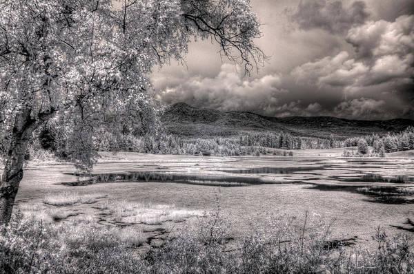 Photograph - Gypsy Bay Road Marsh 1 by Lee Santa