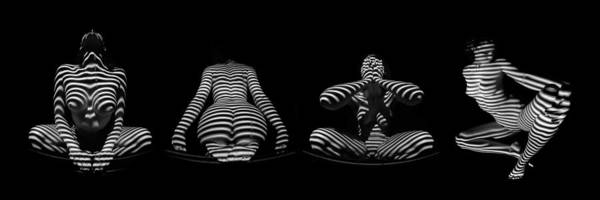 H Stripe Series One Sensual Zebra Woman Abstract Black White Nude 1 To 3 Ratio Art Print