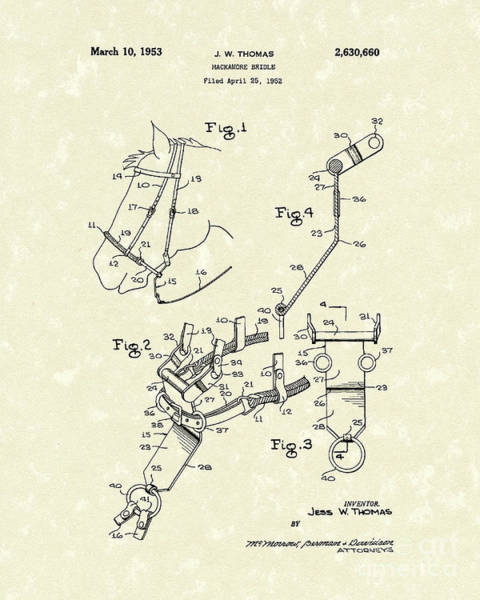 Bridle Wall Art - Drawing - Hackamore Bridle 1953 Patent Art by Prior Art Design