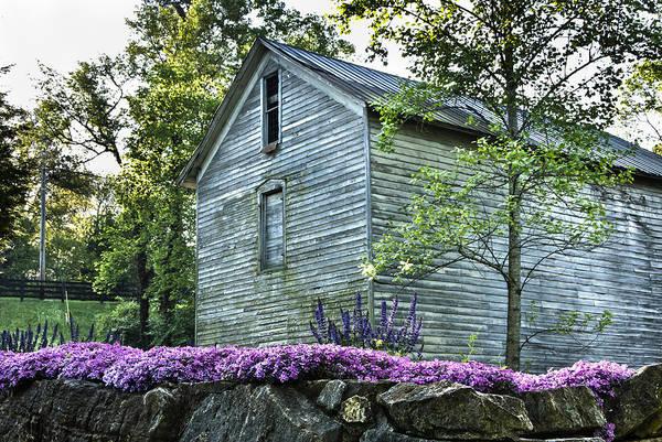 Photograph - Hackney Mill Spring by Carol Erikson