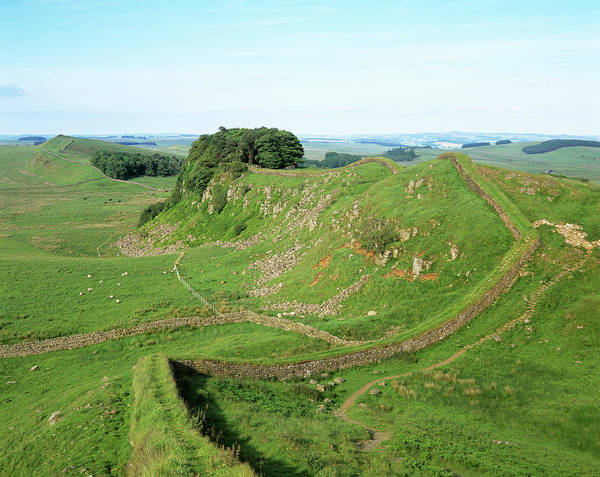 Roman Wall Photograph - Hadrian's Wall In Summer by Simon Fraser/science Photo Library