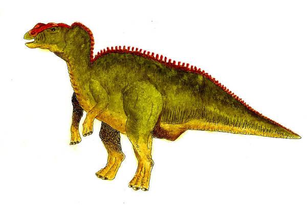 Wall Art - Painting - Hadrosaurus by Michael Vigliotti