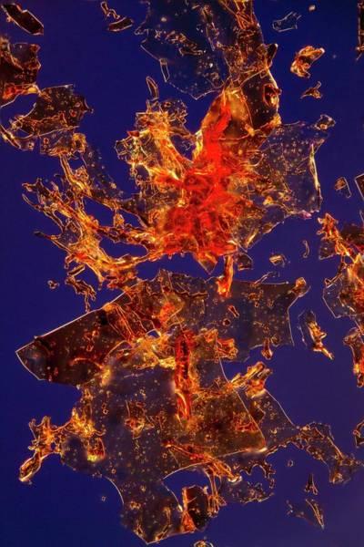 Haematological Wall Art - Photograph - Haemoglobin Crystals by Antonio Romero