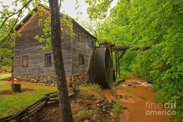 Photograph - Hagood Grist Mill Creek by Adam Jewell