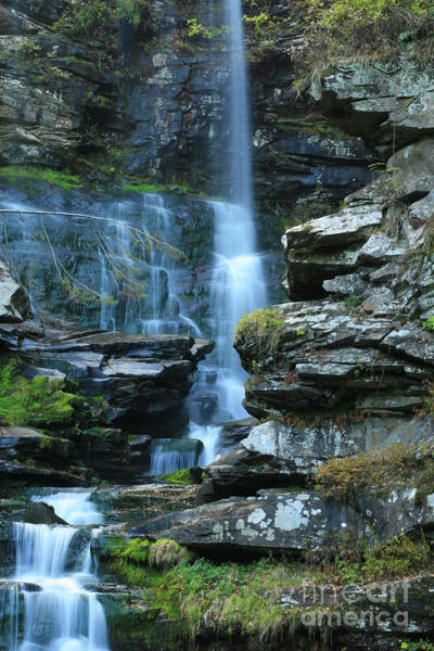 Haines Falls Photograph - Haines Falls Closeup by Colin D Young