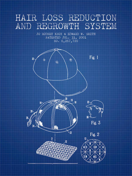 Wall Art - Digital Art - Hair Loss Reduction And Regrowth System Patent - Blueprint by Aged Pixel