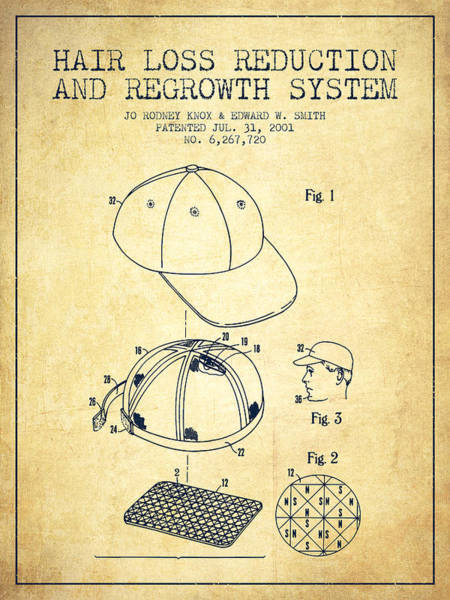 Wall Art - Digital Art - Hair Loss Reduction And Regrowth System Patent - Vintage by Aged Pixel