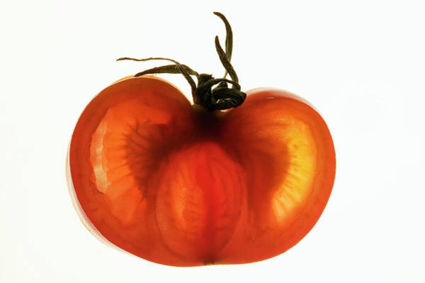 Vegies Photograph - Half A Tomato, Backlit by Foodcollection