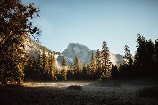 Trees In Fog Photograph - Half Dome At Sunrise by Ryan Tuttle