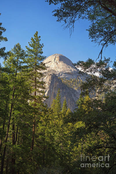 Dome Peak Photograph - Half Dome Yosemite by Jane Rix