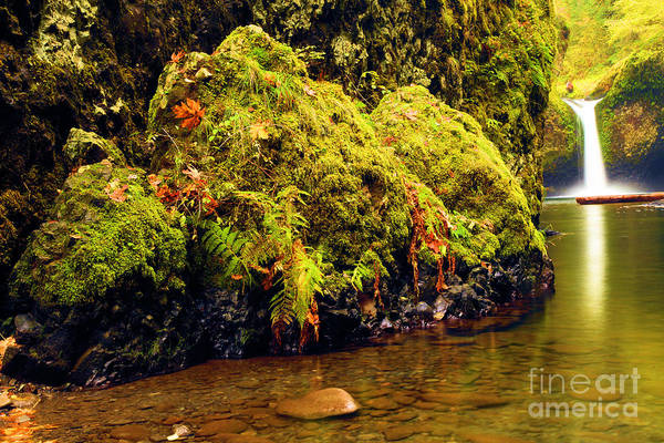 Photograph - Half The Punchbowl by Adam Jewell