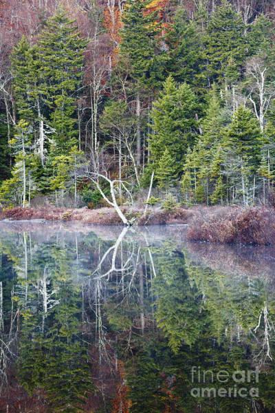 Photograph - Hall Ponds - Sandwich Notch New Hampshire by Erin Paul Donovan
