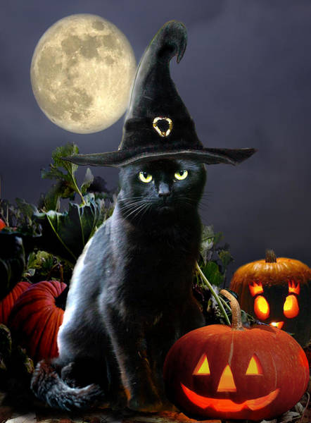 Full Moon Painting - Witchy Black Halloween Cat by Regina Femrite