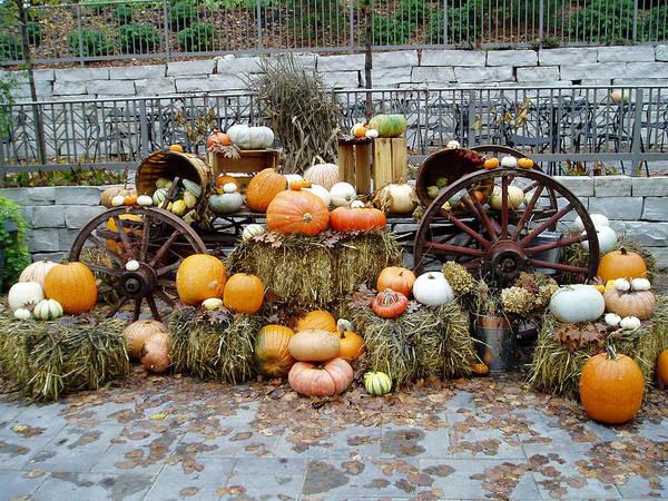 Photograph - Halloween Pumpkins by Susan Leonard
