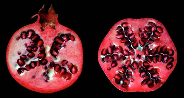 Horizontally Photograph - Halved Pomegranates by Thomas Fester