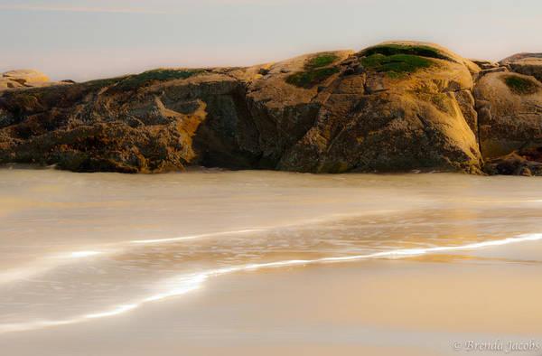 Photograph - Hampton Beach Walruses by Brenda Jacobs