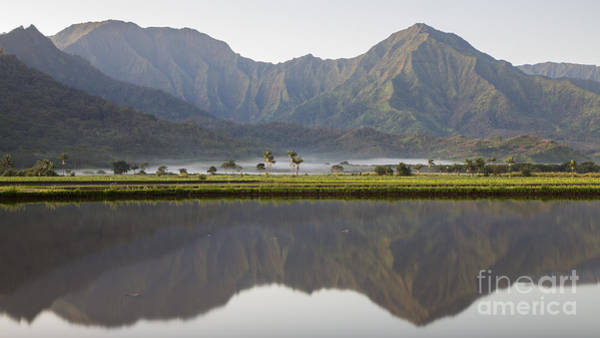 Photograph - Hanalei Reflections by Dustin K Ryan